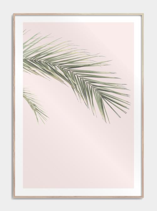 botanisk plakat med palme blade i lyserød baggrund
