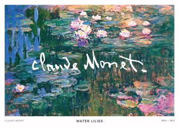 På maleriet ses vandet fra en sø, med en masse åkander og blomster, noget som Monet er særligt berømt for at skildre i sine malerier