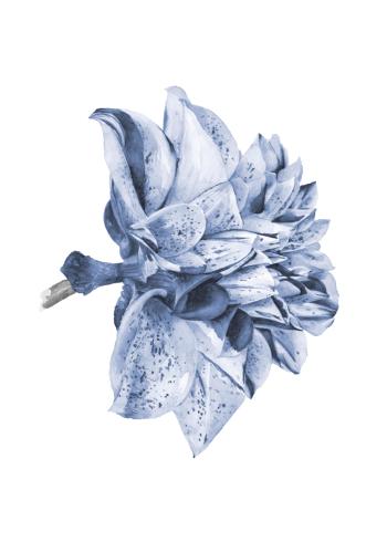 plante plakat af blå smuk blomst i retro stil