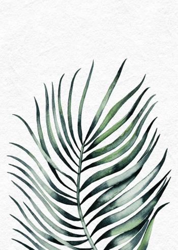 flot plakat med botanisk stemning med grønt palmeblad
