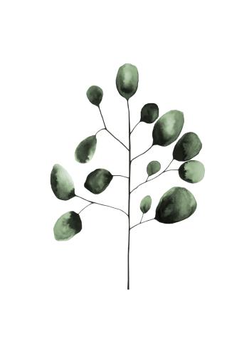 kunst plakat af plante gren i grønne nuancer
