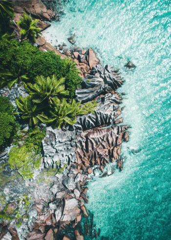 fotoplakat af eksotisk strand med blåt vand og palmer og klipper
