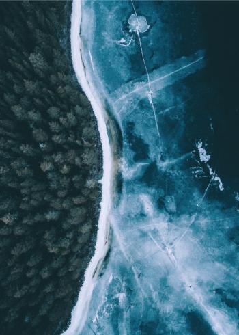fotoplakat af natur med træer og frossen vand