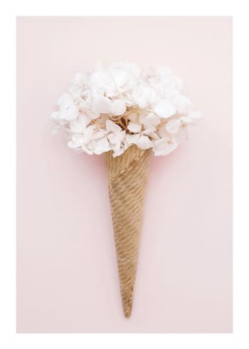 fotokunst plakater med is og blomster