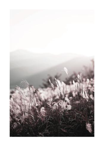 natur plakat med marker og græs i lyserøde toner