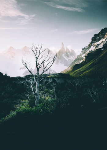 fotoplakat af en kold dag i naturen med bjerge med sne