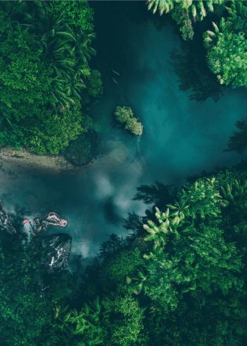 fotoplakat flotte tropiske omgivelser taget med drone