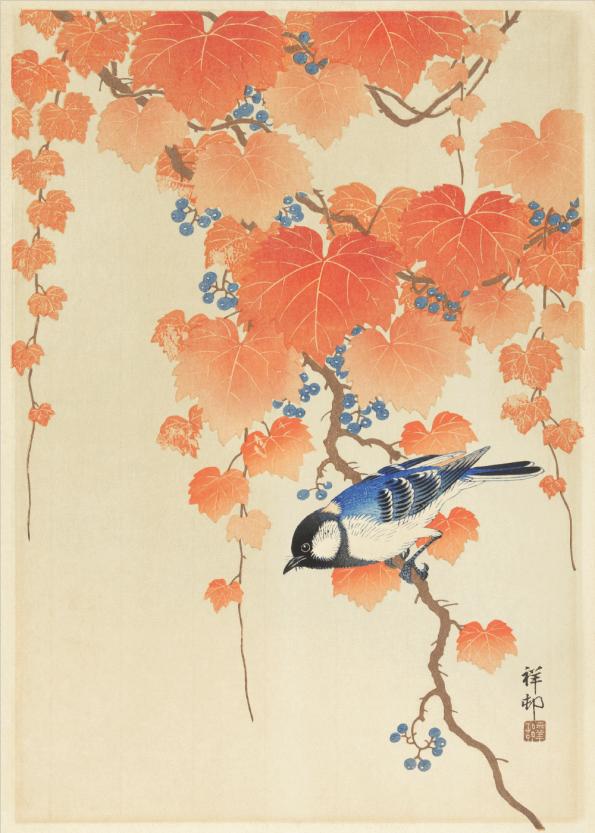 japanske kunst plakater med smukke farver og fugle