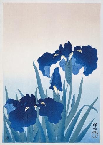 japanske kunst plakater med blomster