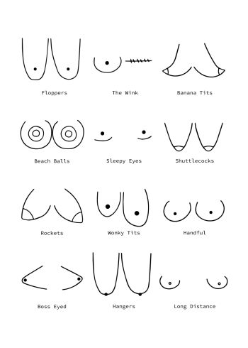 boobies plakat guide