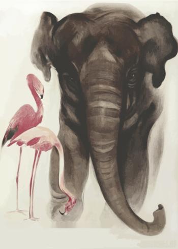zoo plakater med elefanter og flamingoer