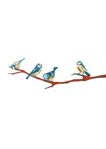 kunst plakater med fire blåmejser fugle