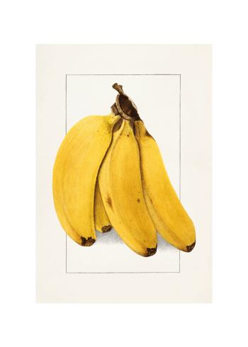 retro bananer til køkkenet