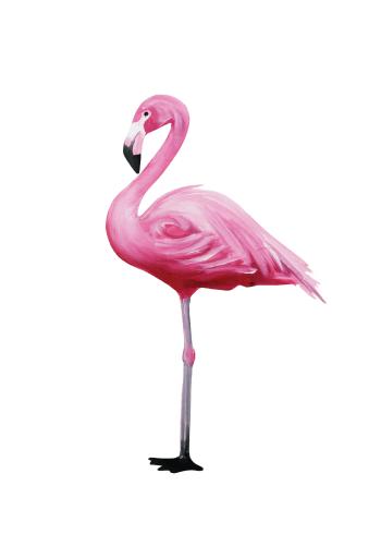 flamingo plakat fra siden i fine farver