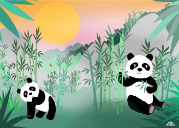 børneplakat med pandaer i der spiser bambus