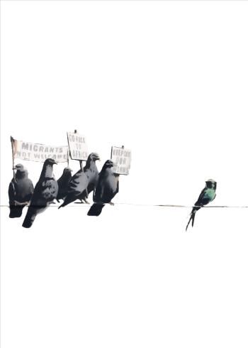 migrants not welcome bird banksy plakat