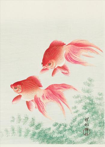 japanske kunst plakater med fisk