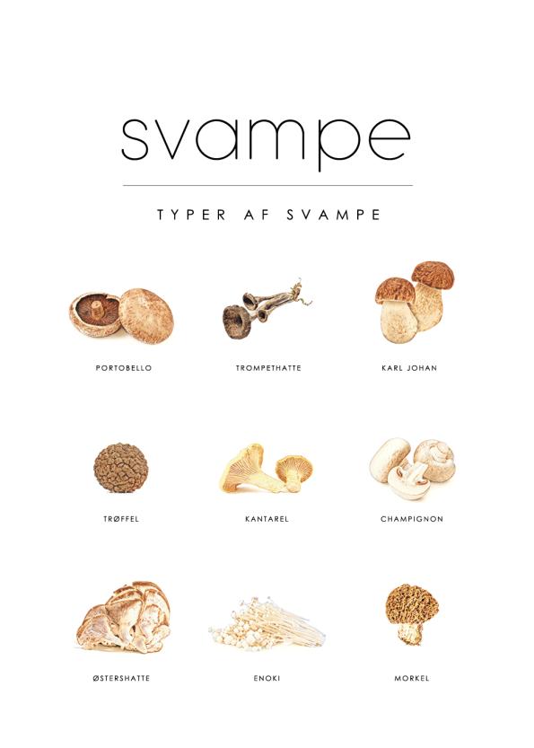 svampe typer på plakat til køkkenet