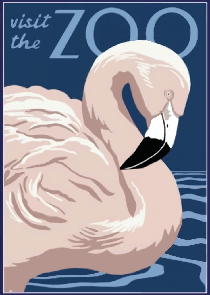 zoo plakater med fin lyserød flamingo