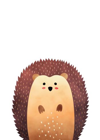 børneplakater med skovens dyr pindsvinet