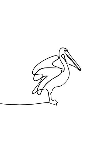 one line drawings med dyr og pelikaner