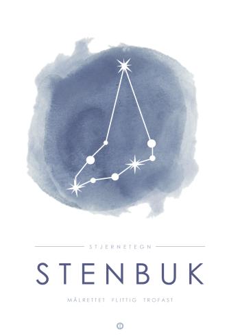 Stenbuk plakat med stjerne billede til dreng