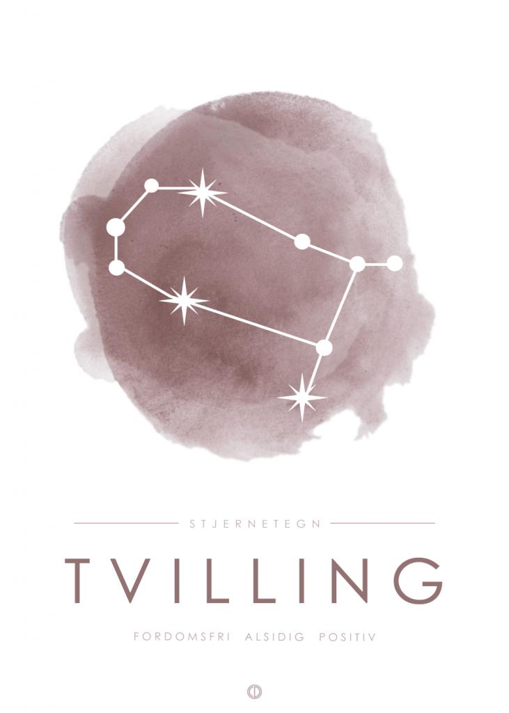 stjernetegn plakat med tvilling i stjernebillede i lyserød