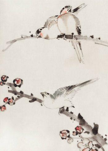 På denne plakat ses tre fugle sidde på grene med blomster. Billedet er udført i akvarel med smukke afdæmpede farver