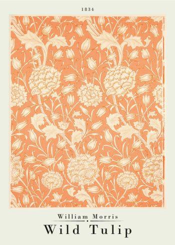 wild tulip orange poster