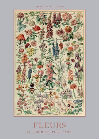 plakater med blomster guide