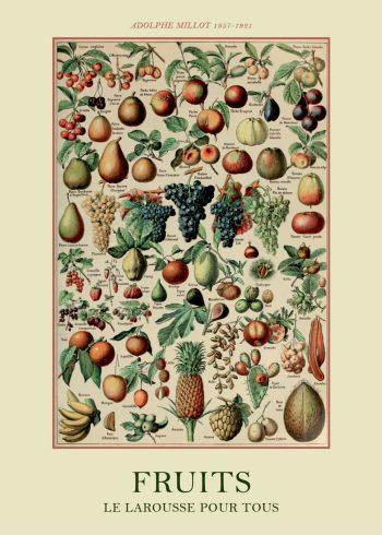 plakater med frugt