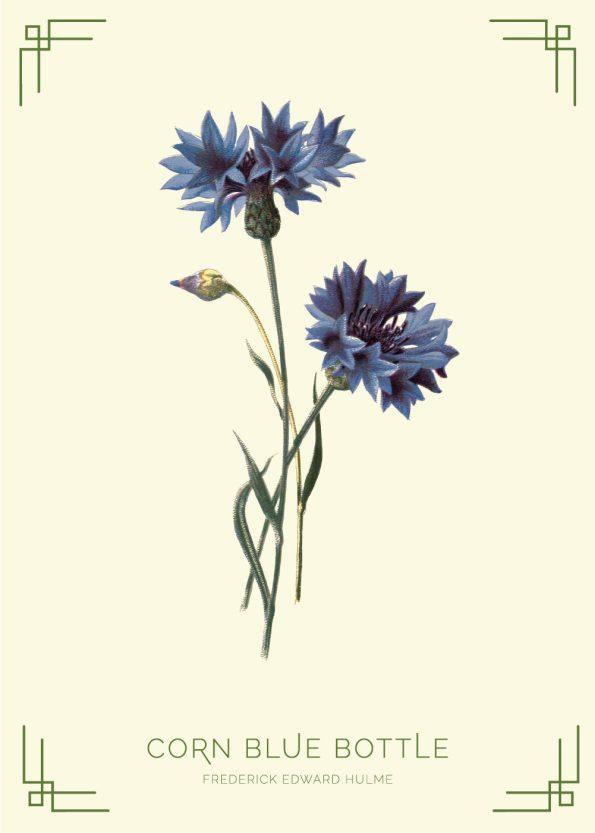 blå blomster, lysegul baggrund, grønne detaljer og skrift