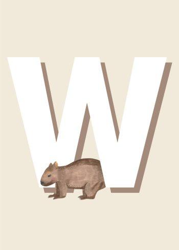 brun wombat, hvidt w med beige baggrund