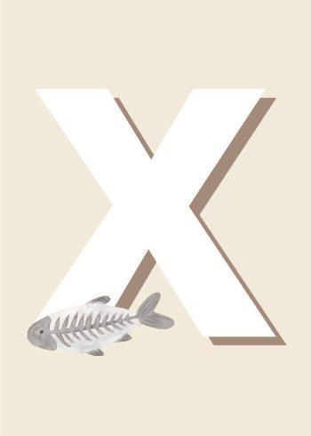 x ray fisk i grå og hvid med hvidt x og beige baggrund