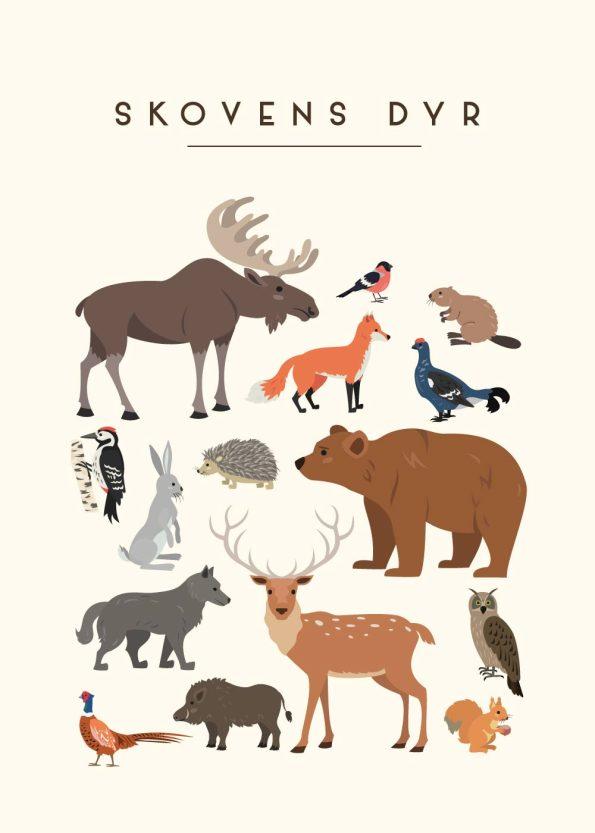 forskellige dyr i skoven med rå hvid baggrund