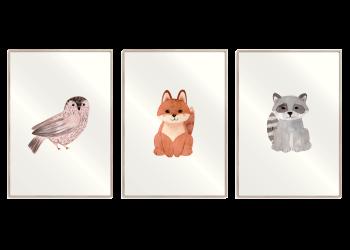 ræv, ugle, vaskebjørn 3 i 1 plakat
