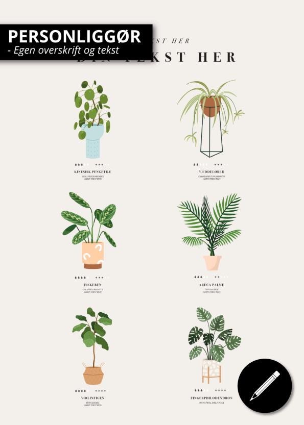 Plante_guide_6_planter
